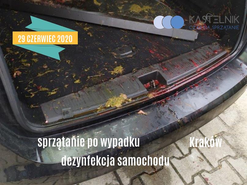 Dezynfekcja samochodu po wypadku z udziałem zwierzęcia Kraków