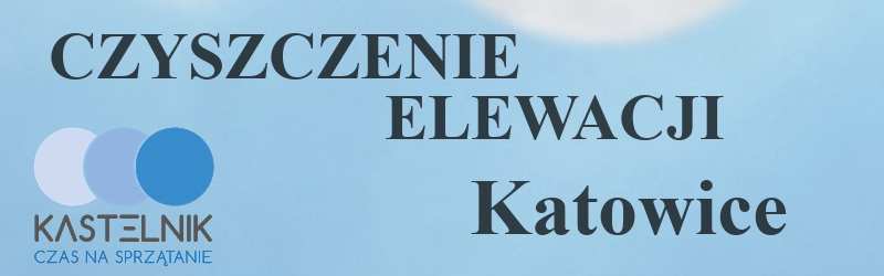 Czyszczenie elewacji Katowice