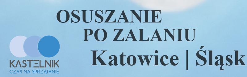 Osuszanie po zalaniu w Katowicach