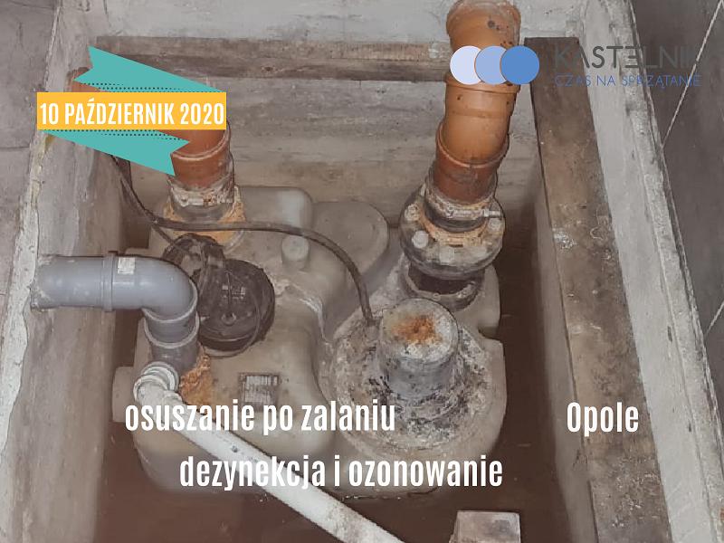 Sprzątanie po zalaniu pomieszczeń sanitarnych w Opolu