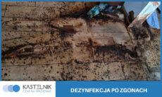 dezynfekcja-po-zwlokach-zmarlym-05