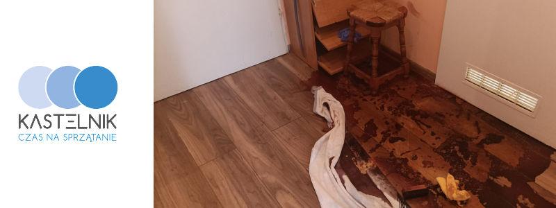 czyszczenie mieszkania po zmarłym w Starachowicach